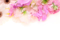 Bouquet of sweetpea ,persian buttercup and transvaal daisy Royalty Free Stock Images