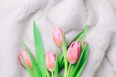 Bouquet of tender pink tulips on silvery white fur background. Flat lay. Copy space. stock photos