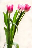 Bouquet of three pink tulips in crystal vase Royalty Free Stock Images