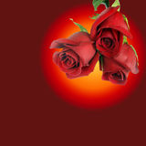 Bouquet from three red roses Royalty Free Stock Photo