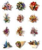 Bouquet très joli douze de fleur Image stock