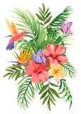 Bouquet tropical avec des palmettes, des fleurs exotiques, des papillons et des colibris illustration stock