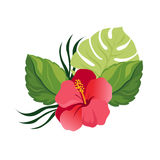 Bouquet with tropical flowers. Elegant floral vector composition. Colorful cartoon illustration vector illustration