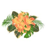 Bouquet with tropical flowers floral arrangement, with beautiful yellow lilies, palm,philodendron and ficus vintage vector illustr Stock Images