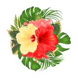 Bouquet with tropical flowers  floral arrangement, with beautiful yellow pink and red hibiscus, palm,philodendron and ficus vintag. E vector illustration Royalty Free Stock Photography