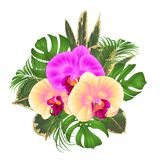 Bouquet with tropical flowers  floral arrangement, with beautiful yellow and purple orchids, palm,philodendron and ficus vintage v. Ector illustration  editable Royalty Free Stock Photo