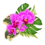 Bouquet with tropical flowers Hawaiian style floral arrangement, with beautiful purple orchid, palm,philodendron and ficus vintage. Vector illustration editable Stock Images