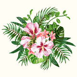 Bouquet of tropical flowers. Stock Photography