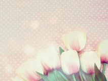 Bouquet of  tulip artificial flower on pink background space for text Royalty Free Stock Photos