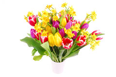 Bouquet of tulip and daffodils flowers Stock Photos