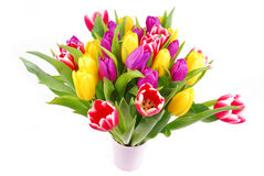 Bouquet of tulip flowers Stock Photography