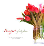 Bouquet of tulip flowers Royalty Free Stock Photos