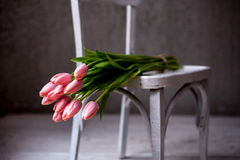 Bouquet of tulip stock photography