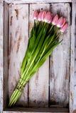 Bouquet of tulip Stock Photos