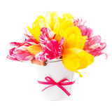 Bouquet from tulips Royalty Free Stock Photo