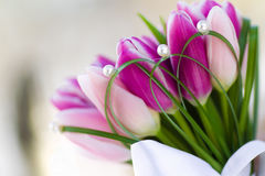 Bouquet tulips. Bouquet of beautiful tulips closeup Royalty Free Stock Photo
