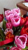 A bouquet of tulips as a gift for you stock photos