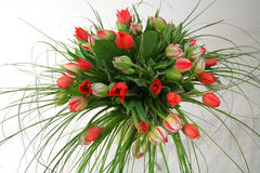 A bouquet of tulips Royalty Free Stock Photo