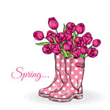 Bouquet of tulips in a beautiful polka dot rubber boots. Vector illustration. Spring flowers. Royalty Free Stock Images