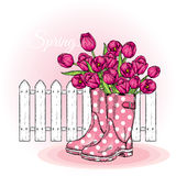 Bouquet of tulips in a beautiful polka dot rubber boots. Vector illustration. Spring flowers. Stock Image