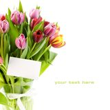 Bouquet of tulips with a blank gift card stock image
