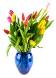 Bouquet of tulips in a blue glass vase. Royalty Free Stock Photo
