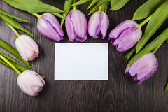 Bouquet of tulips and a card for congratulations Royalty Free Stock Images