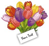 Bouquet of tulips with a card. Inside illustration Royalty Free Stock Photography