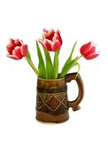 Bouquet of tulips in ceramic mug isolated on whit Royalty Free Stock Images