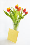 Bouquet of tulips in the crystal vase Stock Images