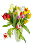 Bouquet of tulips in a crystal vase Royalty Free Stock Photography