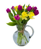 Bouquet of tulips and daffodils. Isolated on white background close up Royalty Free Stock Photography