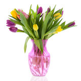 Bouquet tulips in fase Royalty Free Stock Photo