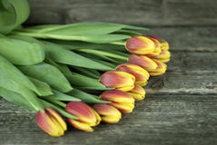 Bouquet of tulips flowers on a wooden background. Spring flowers. Selective focus. Stock Photography