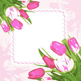 Bouquet tulips and frame. Background decoration beautiful bouquet flowers. Vector illustration Stock Images