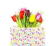 Bouquet of tulips in a gift bag Stock Images