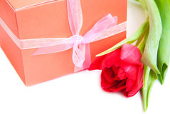 Bouquet of  tulips, gift box on a white background Royalty Free Stock Photos