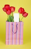 Bouquet of tulips in a gift package and card Royalty Free Stock Image