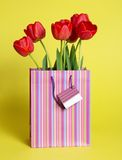 Bouquet of tulips in a gift package Stock Photo