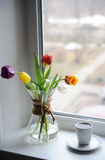 A bouquet of tulips in a glass container for brewing coffee on the windowsill. White cup with coffee. Bright day. Bouquet of multi-colored tulips in a glass Stock Images