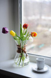 A bouquet of tulips in a glass container for brewing coffee on the windowsill. White cup with coffee. Bright day. Bouquet of multi-colored tulips in a glass Stock Photos