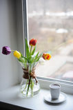 A bouquet of tulips in a glass container for brewing coffee on the windowsill. White cup with coffee. Bright day. Bouquet of multi-colored tulips in a glass Stock Photo