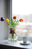A bouquet of tulips in a glass container for brewing coffee on the windowsill. White cup with coffee. Bright day. Bouquet of multi-colored tulips in a glass Stock Image
