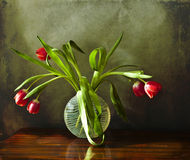 Bouquet of tulips in a glass vase stock photography