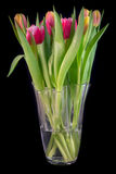 A bouquet of tulips stock photography