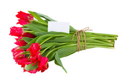 Bouquet of tulips with greeting card Royalty Free Stock Photos