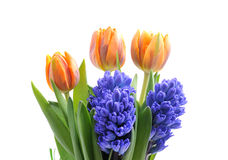 Bouquet of tulips and hyacinths Stock Image
