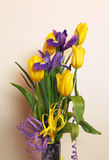 Bouquet of tulips and irises. Bouquet of yellow tulips and purple irises in the vase Stock Images