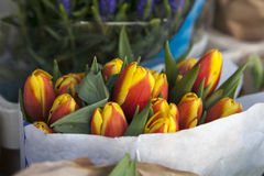 Bouquet of tulips in Kraft paper Stock Images