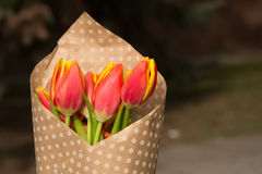 Bouquet of tulips. In paper with polka dots Stock Images